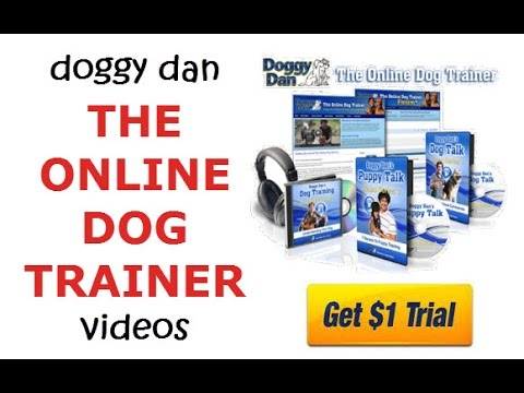Doggy Dan The Online Dog Trainer Trial