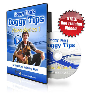 Get The Online Dog Trainer
